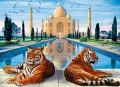 T-M7.1 RSB8450 Diamond Painting Set Tigers 50x40cm