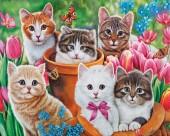 R-K2.2 FH1590 Diamond Painting Set Cats Square 50x40cm